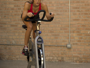 ENDURANCE EXERCISE BIKE