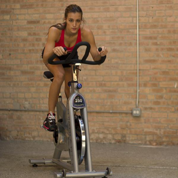 ENDURANCE EXERCISE BIKE