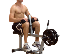 POWERLINE SEATED CALF RAISE